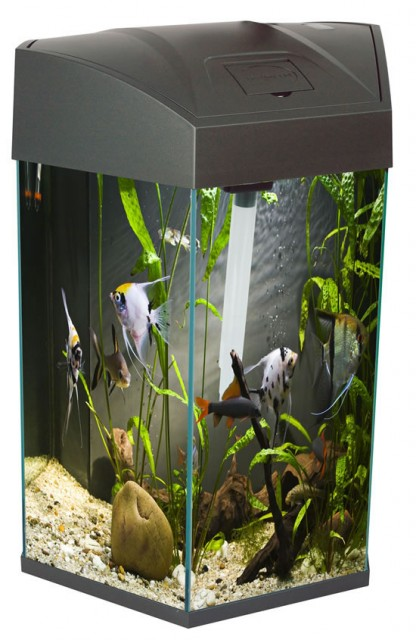 White Fish R Fun Hexagonal Tank 21.6 Litre Capacity