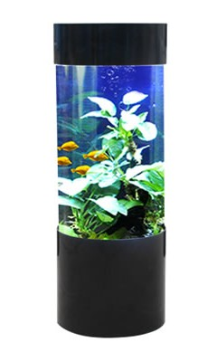 Black column acrylic aquarium 80l by fish r fun