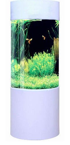 White column acrylic aquarium 80l by fish r fun